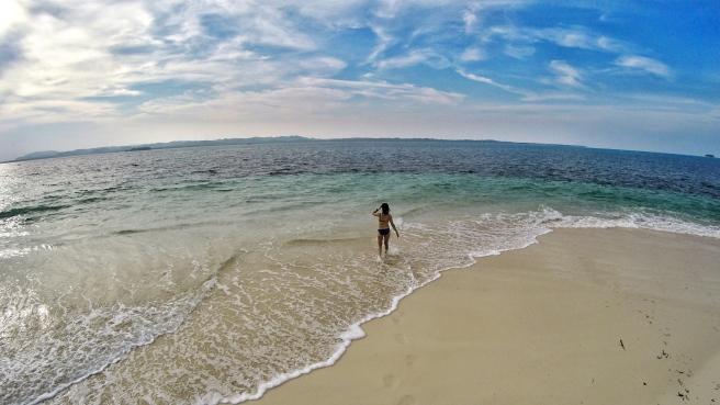 Shoreline of Daku Island.